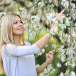 Beautiful young woman outdoors. Enjoy nature in blooming trees i — Stock Photo #39870763