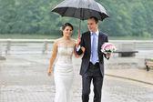 Wedding couple in a rainy day — Stock Photo
