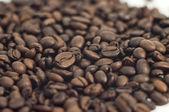Sprinkle of coffee beans macro — Stock Photo
