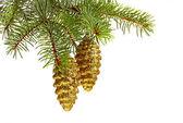 Noel dekorasyonu. altın oyuncak çam kozalakları ve noel ağacı — Stok fotoğraf