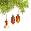 Stock Photo: Christmas bell and two cones. Christmas decoration on the tree