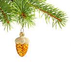 Beyaz arka plan üzerinde izole köknar ağacı üzerinde noel sarı koni. — Stok fotoğraf