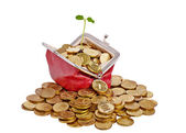 Old red purse with golden coins and gentle green sprout. Isolate — Stock Photo