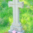 Gravestone — Stock Photo #33289613