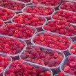 Organic raspberrys on market stand — Stock Photo