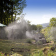 Mist system in garden — Stock Photo #12426307