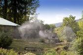 在花园中雾系统 — 图库照片