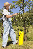 Using chemicals in the garden — Stock Photo