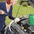 Royalty-Free Stock Photo: Checking oil  level in the vehicle