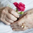 Hands of elderly lady, series of photos - 图库照片