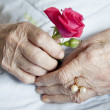 Hands of elderly lady, series of photos - Stok fotoğraf