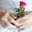 Hands of elderly lady, series of photos - Stock Photo