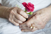 Hands of elderly lady, series of photos — Stock Photo