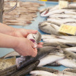 Selling, showing fresh fish on market — Stock Photo #28166411