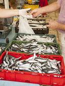 Comprar peixe fresco no mercado — Foto Stock
