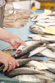 Selling, showing fresh fish on market — Stock Photo