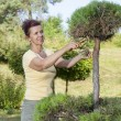 Cute Woman trimming bonsai tree — Stock Photo