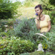 Cute female gardener smelling fresh lavender — Stock Photo