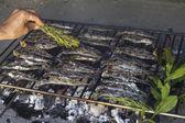 Smarowanie świeże ryby Morza Śródziemnego na grill — Zdjęcie stockowe