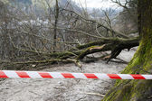 Safety ribbon on damaged forest road — Stock Photo