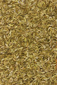 Cumin background — Stock Photo