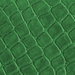 Stock Photo: Green leather