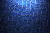 Blue crocodile leather — Stock Photo