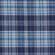Checked textile — Stock Photo #17405575