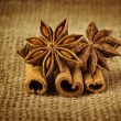 Anise an cinnamon — Stock Photo