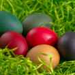 Easter eggs an green grass - Stock Photo