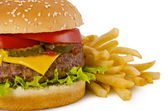 Burger and french fries — Foto de Stock
