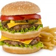 Burger and french fries — Stock Photo