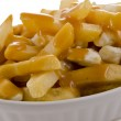Poutine — Stock Photo #14134090