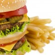 Burger and french fries — Stock Photo #45788609