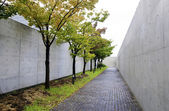 Path with cherry-blossom trees at osaka prefectural sayamaike mu — Stock Photo