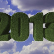 2013 New Year sign of green grass. Eco concept — Stock Photo #16936607