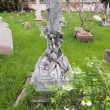 Stock Photo: Protestant Cemetery Bangkok, Thailand