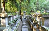 Cemitério no koto-em um templo sub de daitoku-ji — Foto Stock
