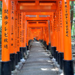 Fushimi Inari Taisha Shrine in Kyoto, Japan — Stock Photo #21251341
