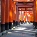 Fushimi Inari Taisha shrine in Kyoto prefecture of Japan — Stock Photo #21293807