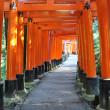 Thousand torii gates in Fushimi Inari Shrine, Kyoto, Japan — Stock Photo