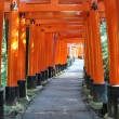 Thousand torii gates in Fushimi Inari Shrine, Kyoto, Japan - Stock Photo