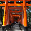 Fushimi Inari Taisha Shrine in Kyoto — Stock Photo #21293929