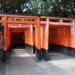 Tori gates at Fushimi Inari Shrine in Kyoto, Japan. — Stock Photo #21294095