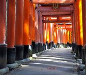 Fushimi Inari Taisha shrine in Kyoto prefecture of Japan — Stock Photo