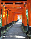 Thousand torii gates in Fushimi Inari Shrine, Kyoto, Japan — Стоковое фото