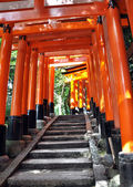 Tunnel of thousand torii gates in Fushimi Inari Shrine, Kyoto — Foto Stock