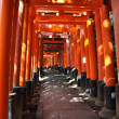 Fushimi Inari Taisha Shrine in Kyoto, Japan — Stock Photo #21606657