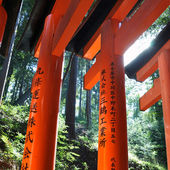 Fushimi Inari Shrine in Kyoto — Stockfoto