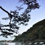 Beautiful landscape in Arashiyama, Kyoto, Japan — Stock Photo